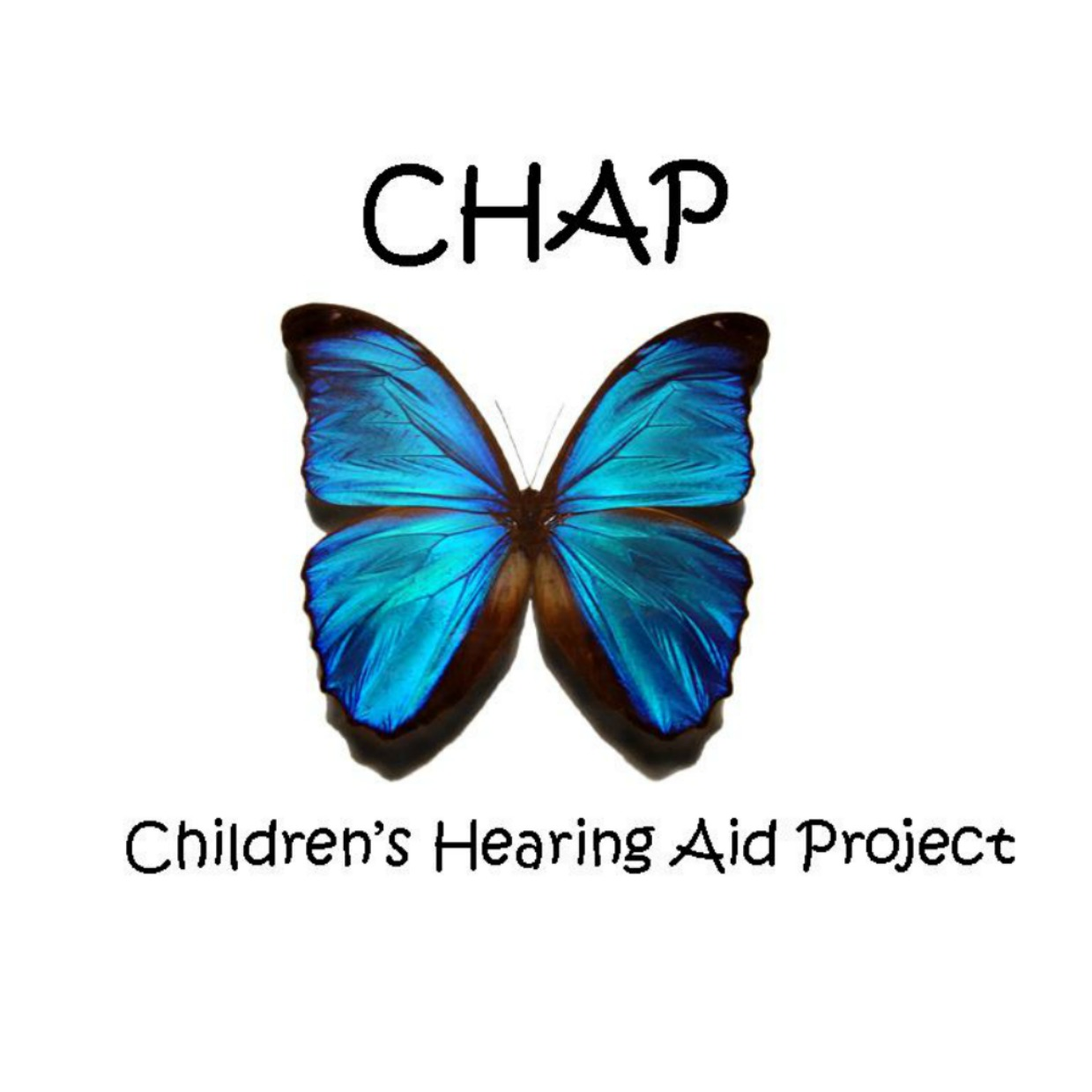 Children's Hearing Aid Project